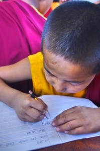 Young monks studying