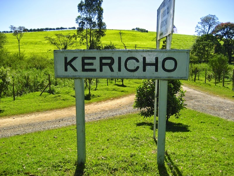 Visting Kericho, Kenya's Tea Planations